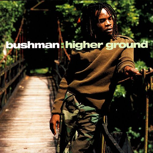 Higher Ground de Bushman