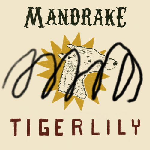 Tigerlily by Mandrake