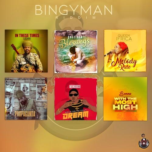 Bingyman Riddim by Various Artists