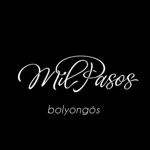 Bolyongós by Mil Pasos