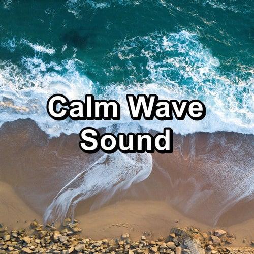 Calm Wave Sound by Sleep Music Lullabies (1)