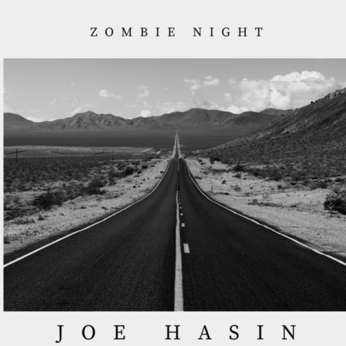 Zombie Night by Joe Hasin