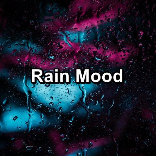 Rain Mood von Deep Sleep (2)