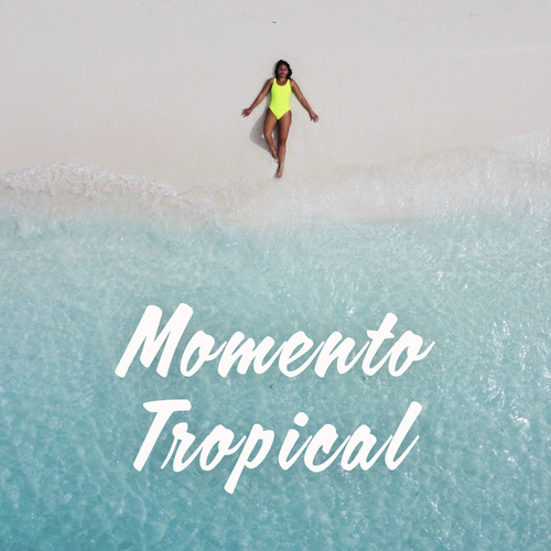 Momento Tropical de Various Artists