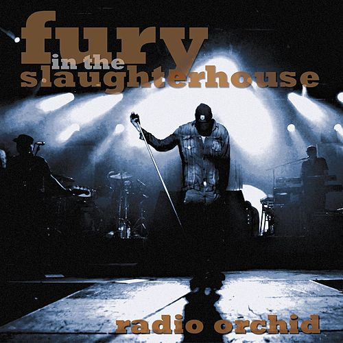 Radio Orchid Live 2008 [Radio Edit] von Fury In The Slaughterhouse