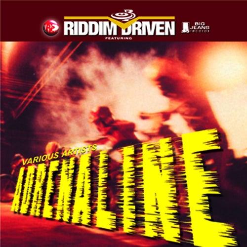 Riddim Driven: Adrenaline by Various Artists