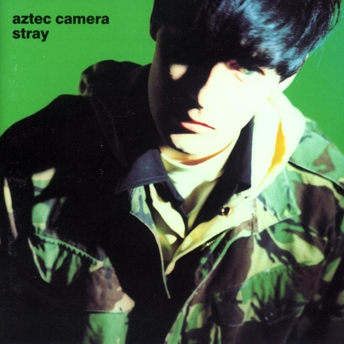 Stray (US Internet Release) von Aztec Camera