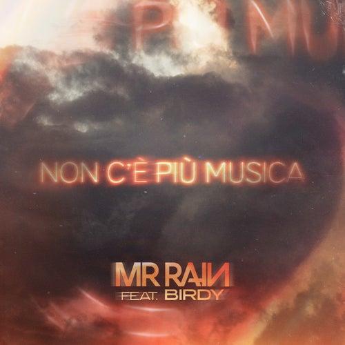 Non c'è più musica (feat. Birdy) by Mr.Rain