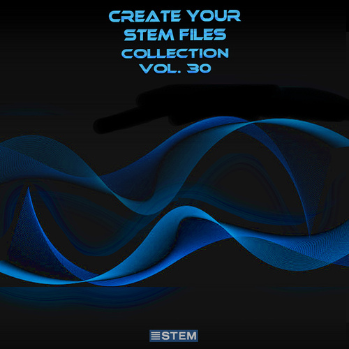 Create Your Stem Files Collection, Vol. 30 (Instrumental Versions And Tracks With Separate Sounds) by Express Groove