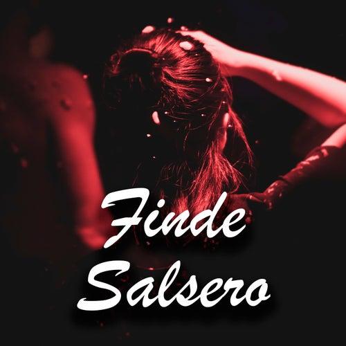 Finde Salsero von Various Artists