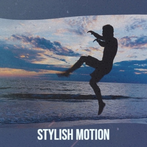 Stylish Motion by Various Artists