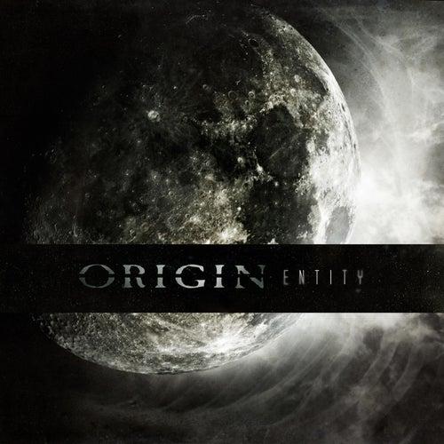 Entity by Origin