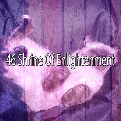 46 Shrine of Enlightenment by White Noise Babies