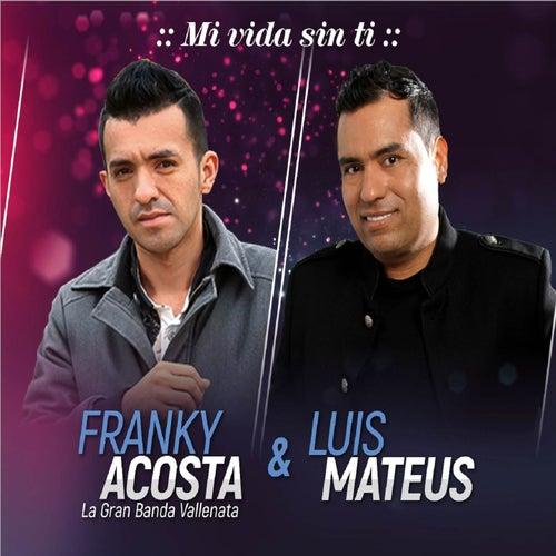 Mi Vida Sin Ti von Luis Mateus