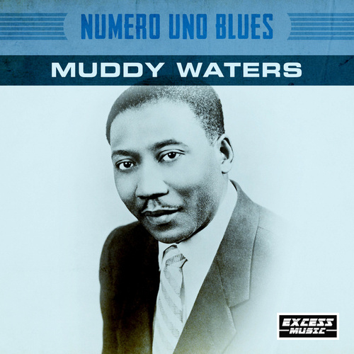Numero Uno Blues von Muddy Waters
