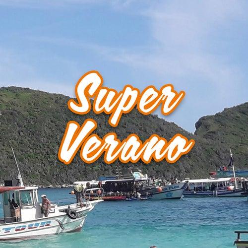 Super Verano de Various Artists