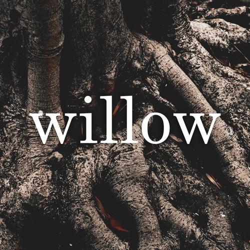Willow fra Somatina