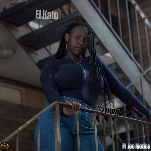 Comin' In (feat. Joe Motley) de KATO & Sigala