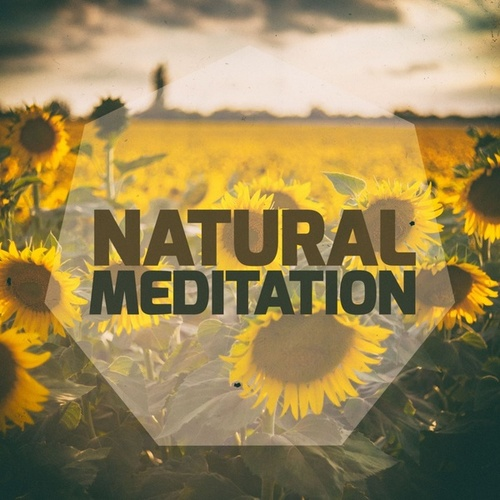 Natural Meditation by Various Artists