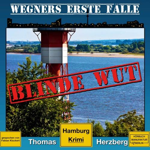 Blinde Wut - Wegners erste Fälle - Hamburg Krimi, Band 3 (ungekürzt) von Thomas Herzberg