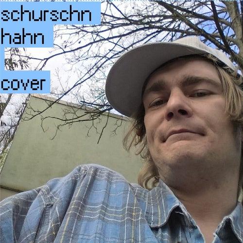 Cover de Schurschn Hahn