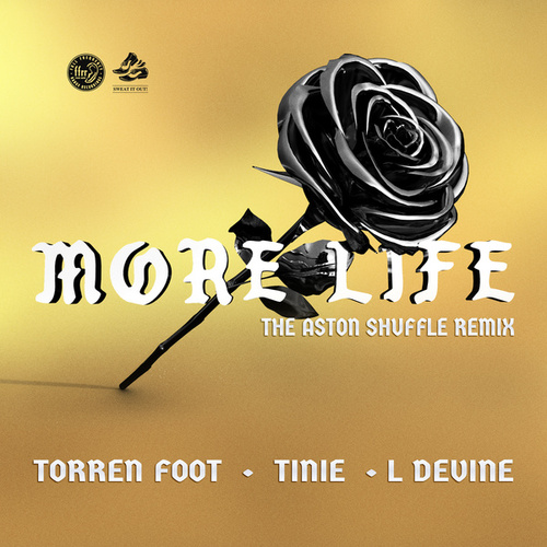 More Life (feat. Tinie Tempah & L Devine) (The Aston Shuffle Remix) by Torren Foot