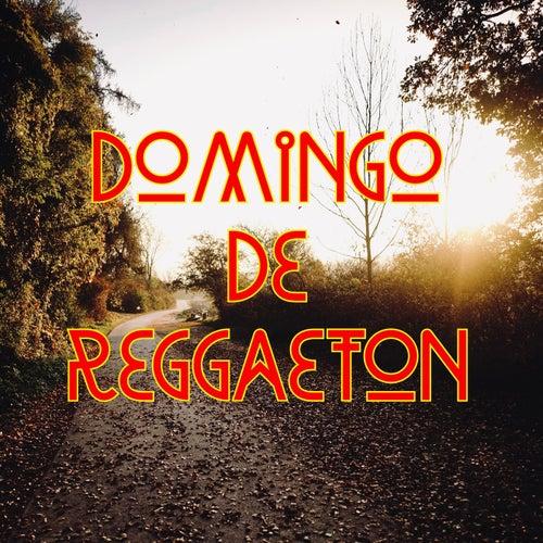 Domingo De Reggaeton de Various Artists