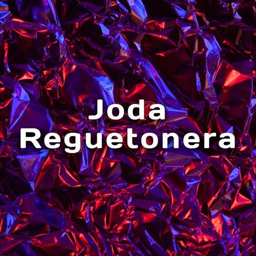Joda Reguetonera by Various Artists