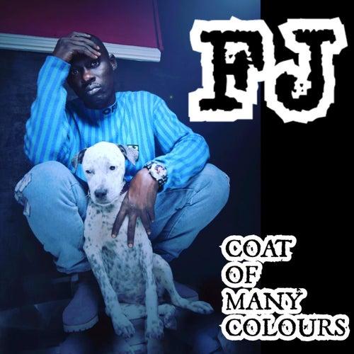 Coat of Many Colours de Fj
