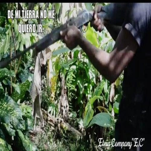De Mi Tierra No Me Quiero Ir de Agrupación musical: Etnia Company