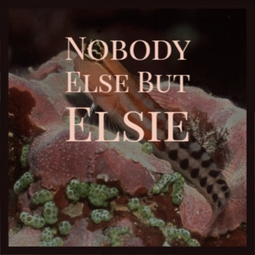 Nobody Else but Elsie by Henry Hall Peggy Lee