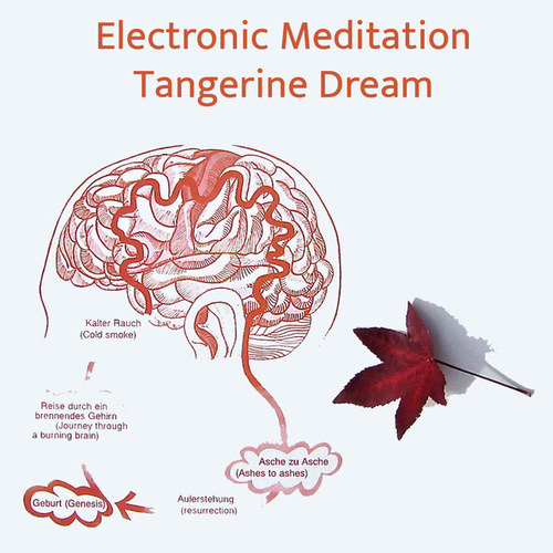 Electronic Meditation de Tangerine Dream