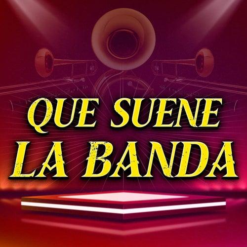 Que Suene La Banda by Various Artists