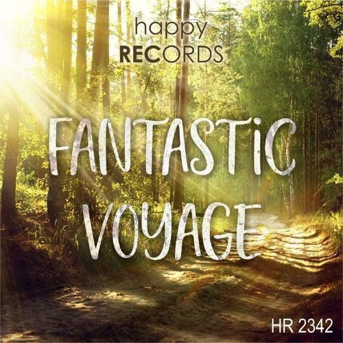 Fantastic Voyage von Jochen Schmidt-Hambrock