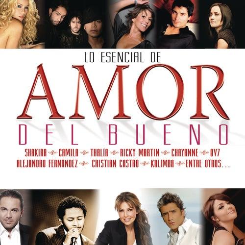 Lo Esencial De Amor Del Bueno 2011 de Various Artists