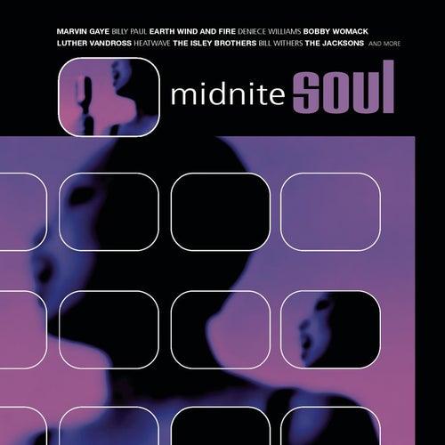 Midnite Soul de Various Artists