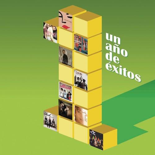 Un Año De Exitos Vol.2 de Various Artists