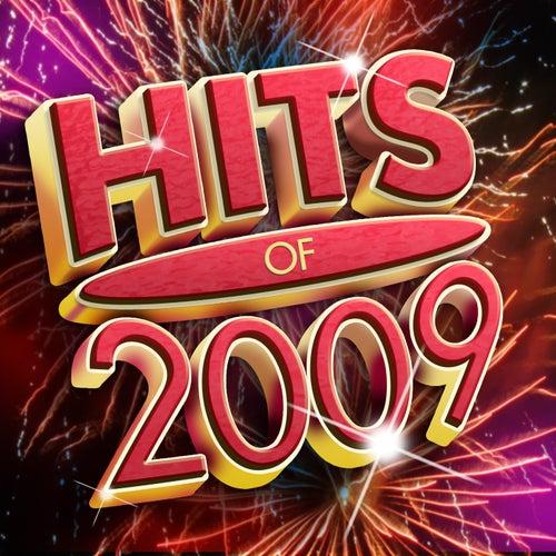 Hits Of 2009 de Various Artists