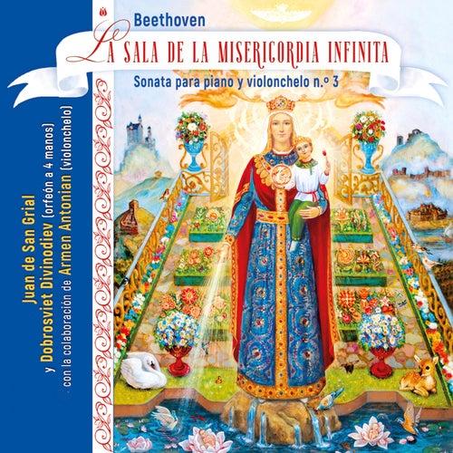 La Sala de la Misericordia Infinita (cover) de Juan De San Grial