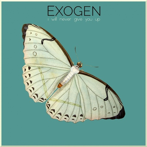 I Will Never Give You Up (Single) by Exogen