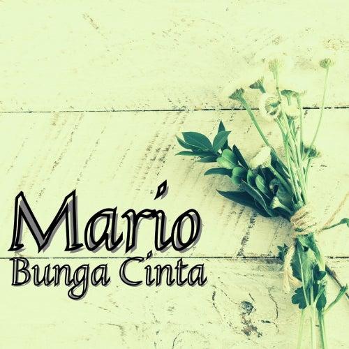 Bunga Cinta by Mario
