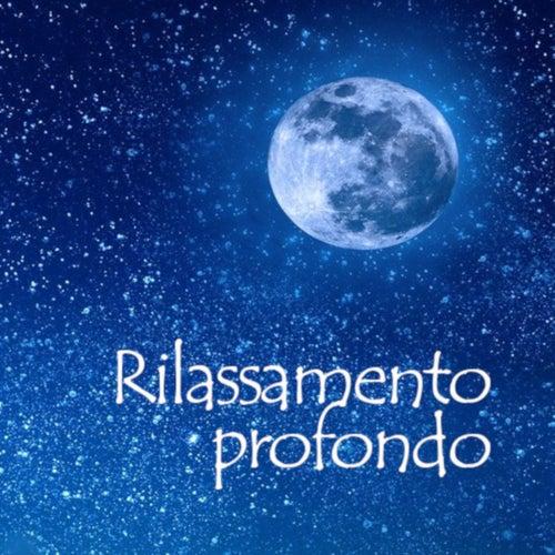Rilassamento Profondo by Various Artists