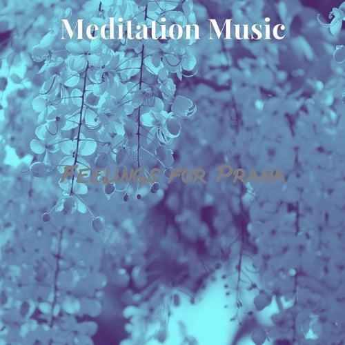 Feelings for Prana by Meditation Music