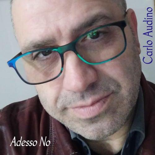 Adesso no di Carlo Audino