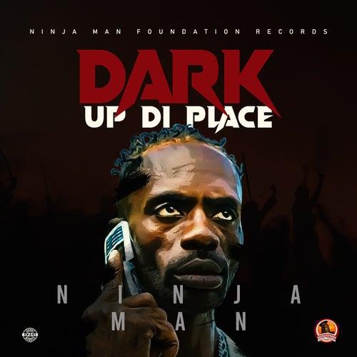 Dark Up Di Place by Ninjaman