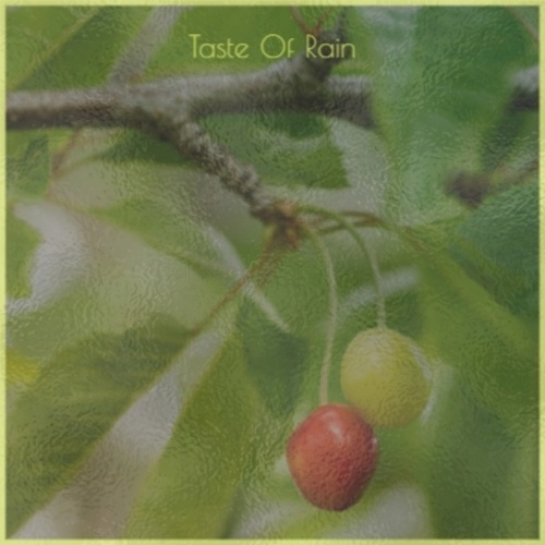 Taste Of Rain de Various Artists