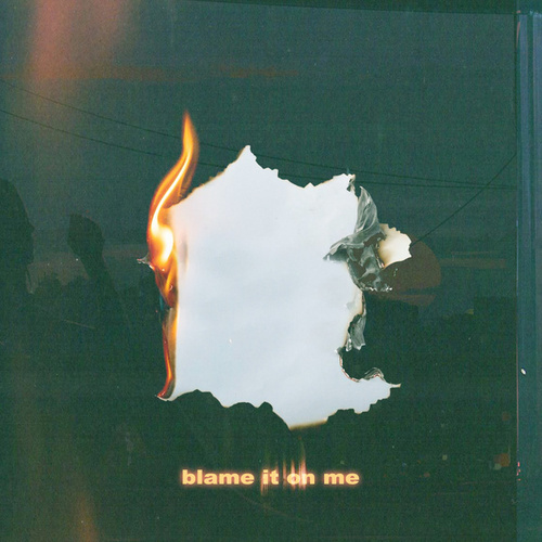Blame It On Me de Richie Campbell