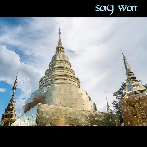 Say Wat by Junk