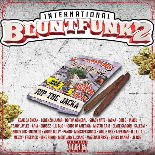 International Blunt Funk 2 by Various Artists