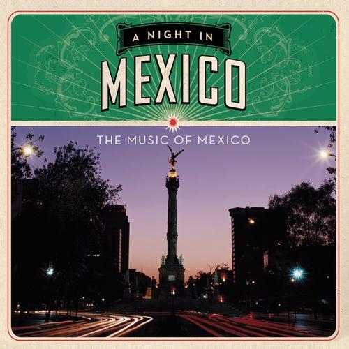 A Night in México de Various Artists
